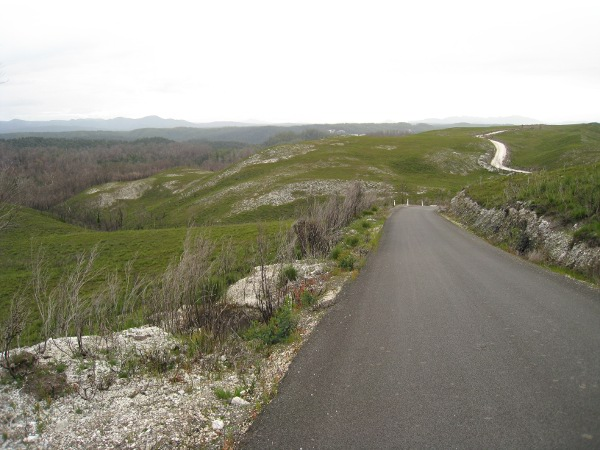 photograph of a winding road